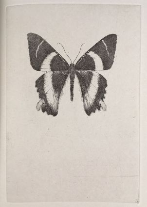 Lepidoptera : the Death of the Moth. Essay by Virginia Woolf. Etchings by Sarah Horowitz.