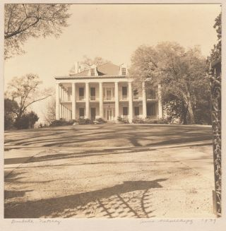 [An archive of artistic photographs of plantation homes and other southern subjects].