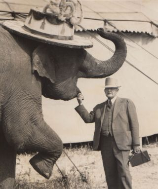 A mammoth album of circus photographs]. James V. Chloupek, compiler