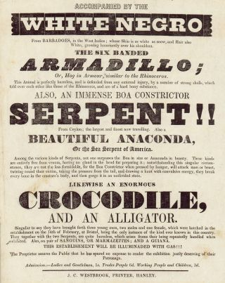 Never Here Before: Wonderful Phenomena of Nature. Patronized by her present majesty, Queen Victoria. At Hyde Park Fair, 1838.