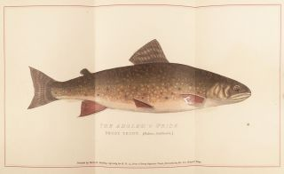 Brook Trout Fishing : An Account of a Trip of the Oquossoc Angling Association To Northern Maine, In June, 1869. [Cover title: About Brook Trout].