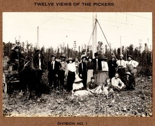 [Photograph album of the Wigrich Ranche, Independence, Oregon.]